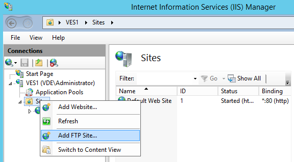 Add a FTP site in IIS